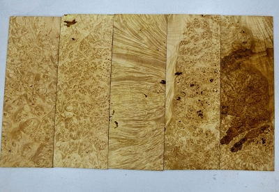 Maple Burl Pickguards, 5 pieces 0.25