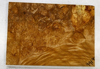 Maple Burl block 0.5